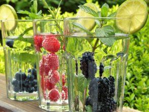 Owocowy ogród