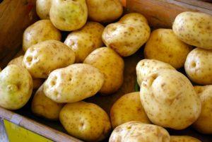 Obierać kartofle