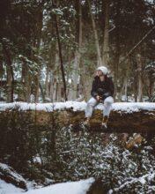 siedzieć na drzewie