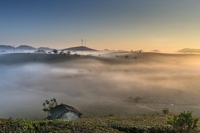 Chodzić we mgle